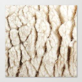 Sheep Wool Canvas Print