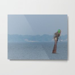 Chesapeake Bay Marker Metal Print