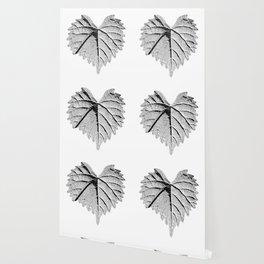 backlight leaf drawing Wallpaper