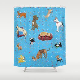 Lessons my dogs taught me. Shower Curtain