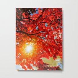 Fall...ing in love with fall. -II.- Metal Print