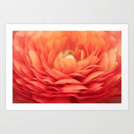 Soft Layers Art Print