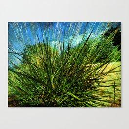 just green Canvas Print