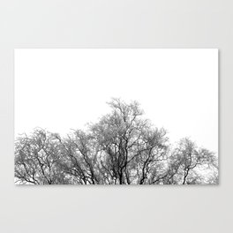A tree and his crown in winter II Canvas Print