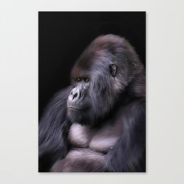 Mountain Gorilla Canvas Print
