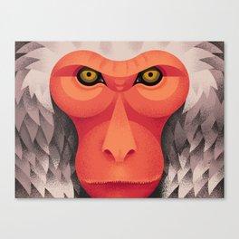 Japanese Monkey Canvas Print