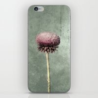 cinderella iPhone & iPod Skins featuring CINDERELLA by Christina Lynn Williams