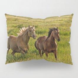 Summer Run Pillow Sham