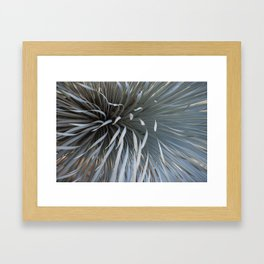Growing grays Framed Art Print