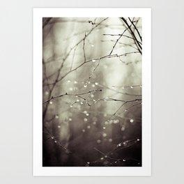 Colorless Art Print