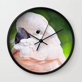 Moluccan Cockatoo Wall Clock