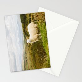 A sheep in the Irish hills Stationery Cards