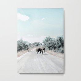 Elephant Road Crossing Metal Print