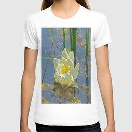 Blue Damselfly Aquatic Lily T-shirt
