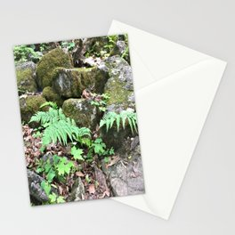 Fern Forest Floor Stationery Cards