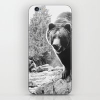 pooh iPhone & iPod Skins featuring Winnie the Pooh by Taylor Aydelotte