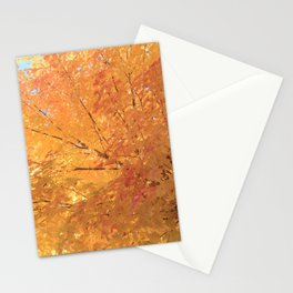 Autumn Explosion Stationery Cards