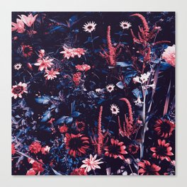 Cobalt And Carmine Bold Night Floral Canvas Print
