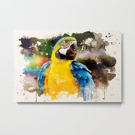Deep Looking Macaw Metal Print