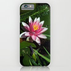 Little Water Lily  Slim Case iPhone 6s