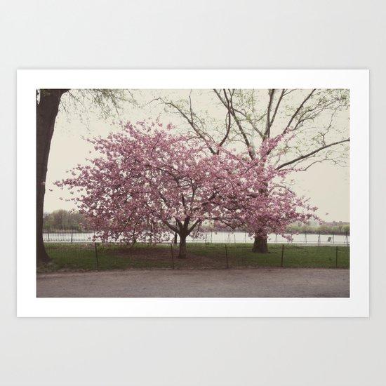 in bloom::nyc Art Print