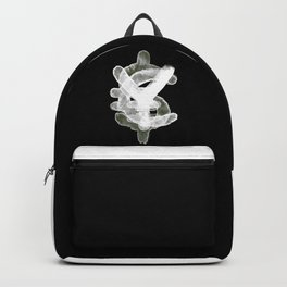 YES to CASH Backpack