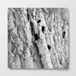 Black and White Tree Bark Metal Print