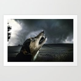 Dog moonlight 1 Art Print