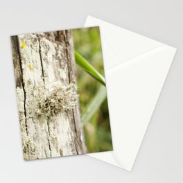 Fungus Stationery Cards
