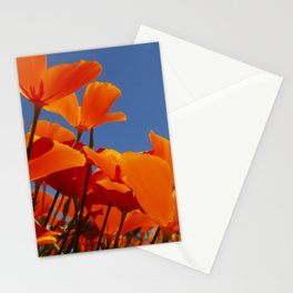 Orange Poppies in Field Reaching Up to the Sun Stationery Cards