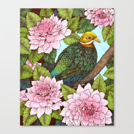 Whistling Fruit Dove in Spring Canvas Print