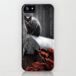 BLACK CAT II iPhone Case