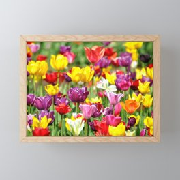 PRETTY TULIPS Framed Mini Art Print