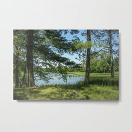 Picture USA Morton Arboretum Northern Illinois Summer Nature park Lake Grass Trees Parks Metal Print