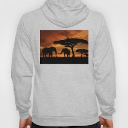 African elephants silhouettes in sunset Hoody