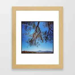 Oak Tree over Ghost Ranch, New Mexico Framed Art Print