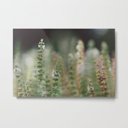 Botanical no. 2 Metal Print