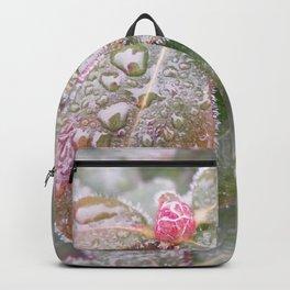 Dawnesque Dew Backpack