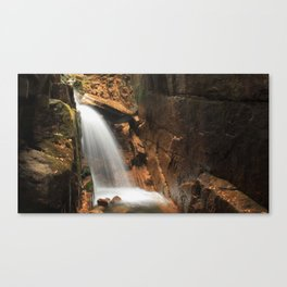 THE FLUME Canvas Print