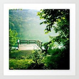 Catskills Lake Art Print