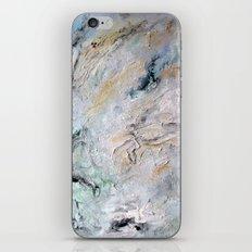 San Onofre iPhone & iPod Skin