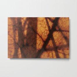 Macrotopia vegetal Metal Print