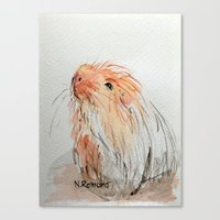 guinea pig Canvas Prints featuring Guinea pig by N.Romano