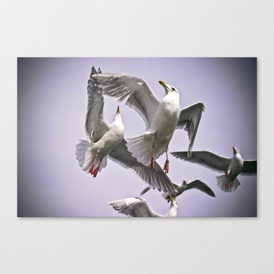 """ The Beauty of Flight "" - Print Canvas Print"