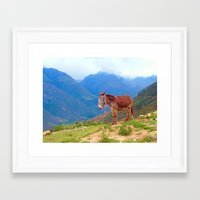 donkey Framed Art Prints featuring Donkey by KA Doodle