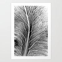 Black And White Leaf Art Print