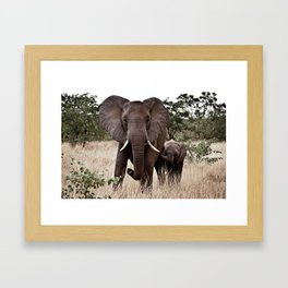 Elephant & Calf Framed Art Print