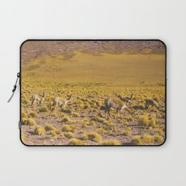 Vicuñas in the Desert, San Pedro de Atacama, Chile Laptop Sleeve
