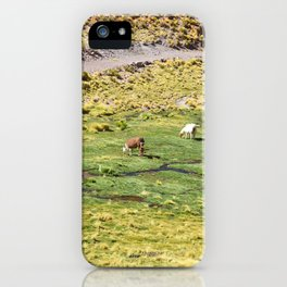 LHAMA I iPhone Case