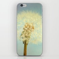 coconut wishes iPhone & iPod Skins featuring Wishes by The Last Sparrow